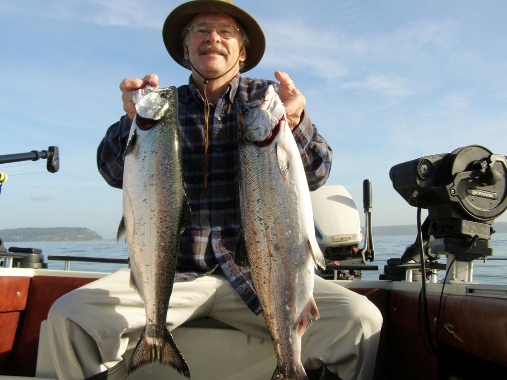 Hatchery Chinook salmon