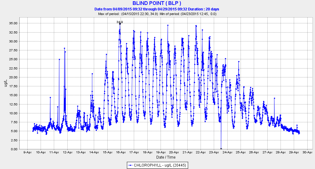 Figure 1.  Chlorophyll levels at Blind Point in the western Delta in the San Joaquin River channel during April 2015.  (Source: CDEC)