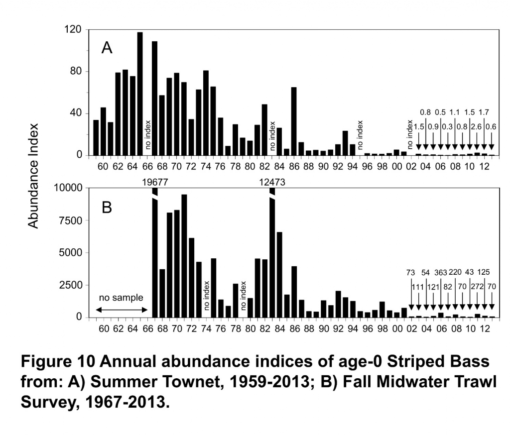 Figure 1. Young Striped Bass summer (A) and fall (B) abundance indices.  (Source: CDFW)
