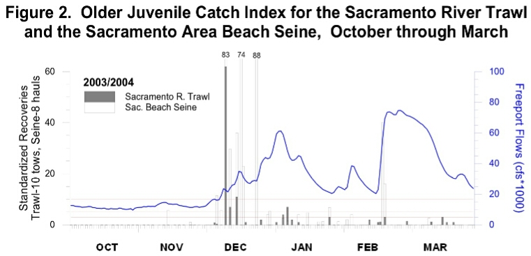 Graph of Occurrence of juvenile salmon