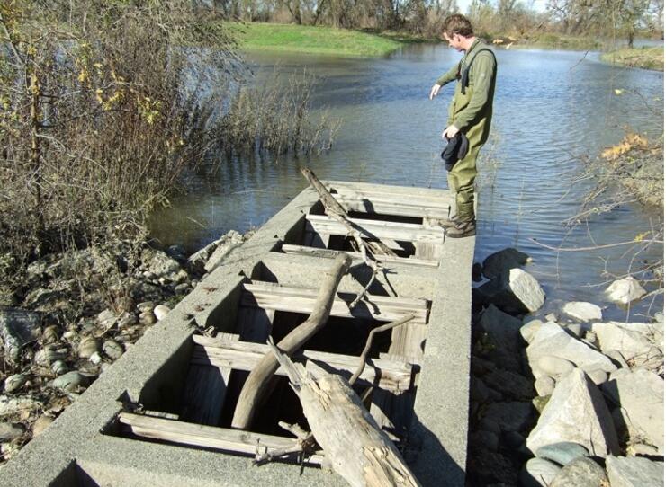 Photo of Fremont Weir Fish Ladder