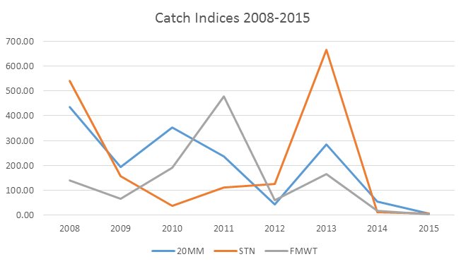 Figure 2. Catch indices trends for longfin smelt from 2008-2015 in three major Bay-Delta surveys: March 20-mm Survey, June Summer Townet Survey, and Fall Midwater Trawl Survey. (Note: The 20-mm index for March 2016 was 6.)