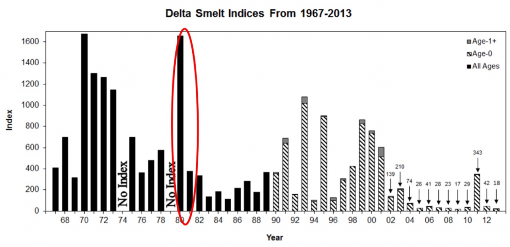 Figure 1. Fall Midwater Trawl Index for Delta smelt 1967-2013. (Source: CDFW.)