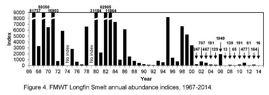 Figure 1. Longfin smelt index from Fall Midwater Trawl Survey 1967-2014. The index in 2015 was a record low 4.