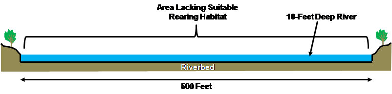 Figure 1. Cross-sectional profile of the upper Sacramento River in an area 500 feet wide and 10 feet deep (scale is approximate).