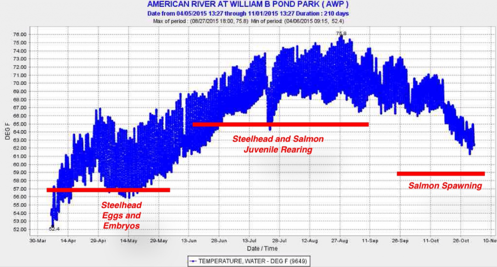 Figure 2. Water temperature in the American River at William Pond Park at the downstream end of the river's spawning reach in 2015. Red lines depict water temperature objectives set for salmon and steelhead spawning and rearing.