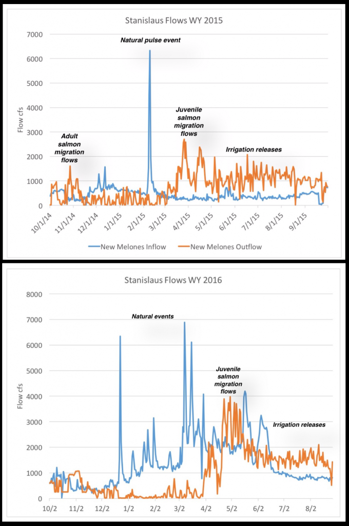 Figure 5. New Melones Reservoir inflow (blue line) and outflow (orange line) in water year 2015 (top) and 2016 (bottom). Note prescribed fall and spring pulse flow releases for salmon and steelhead.