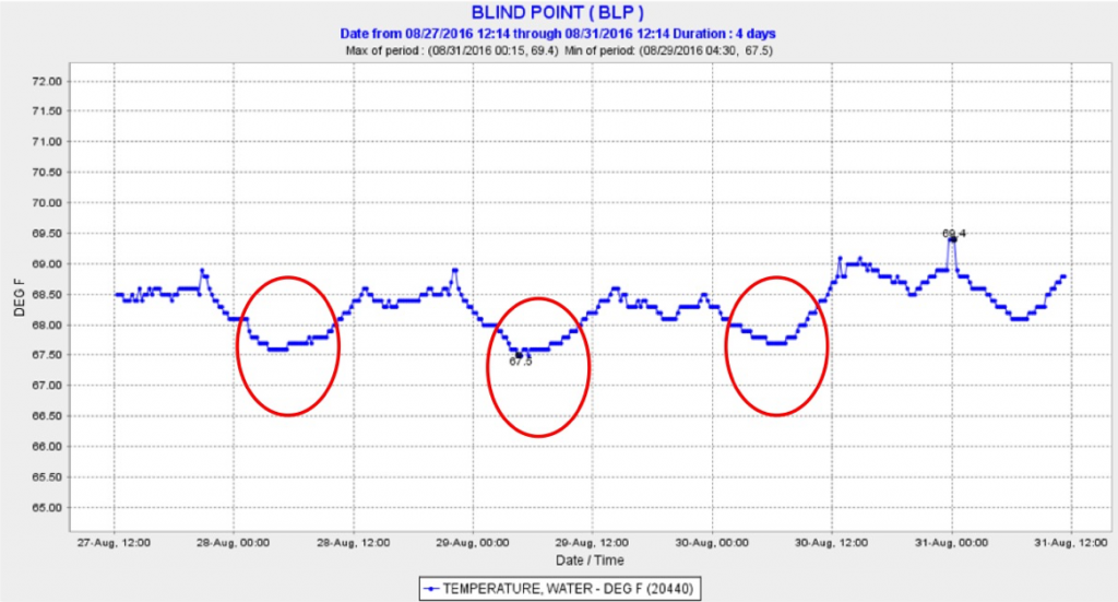 Figure 5. Water temperature in summer 2016 at Blind Point in the lower San Joaquin channel (magenta line in Figure 2). Red circles denote periods when X2 approached Blind Point.