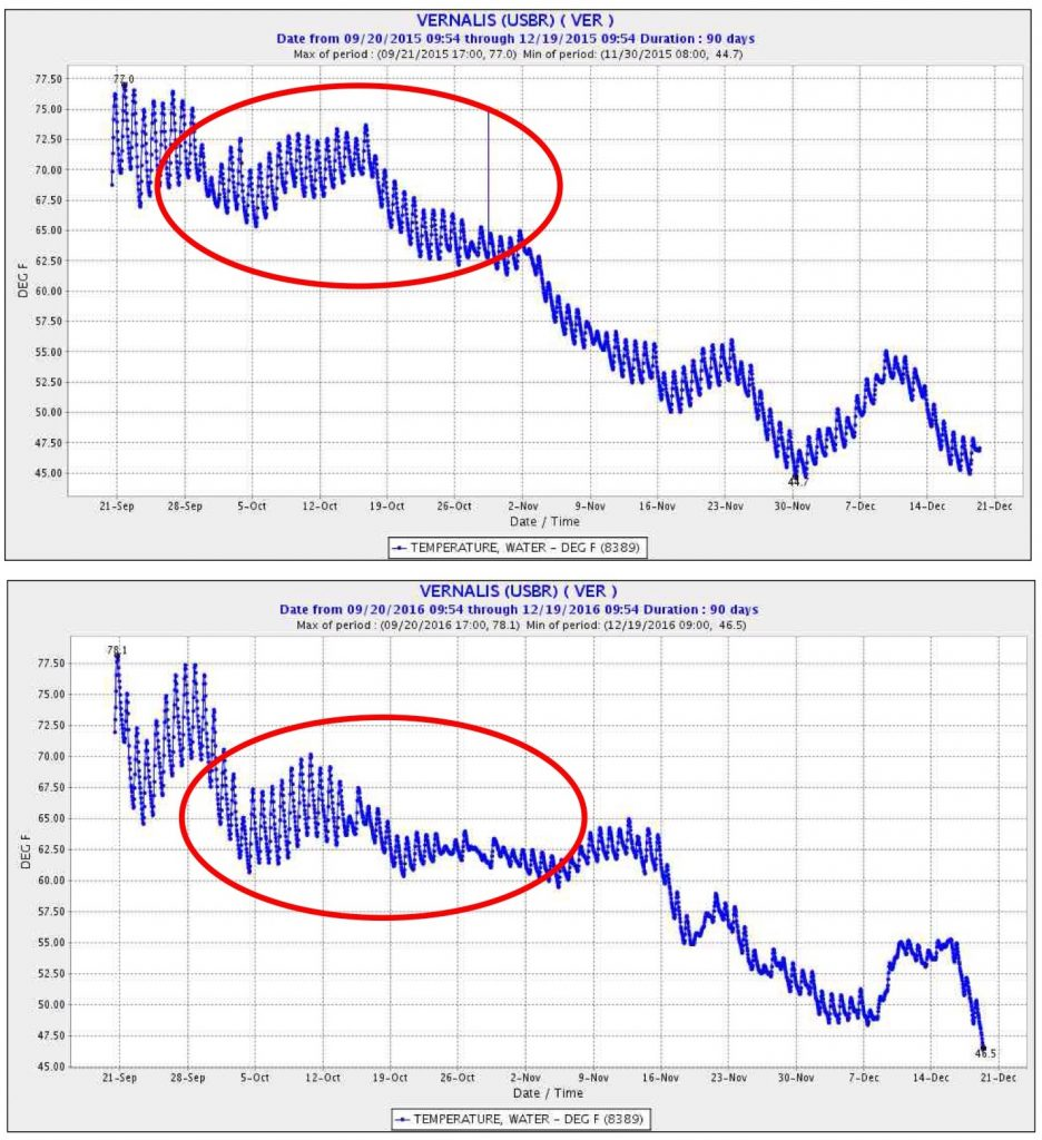 Figure 5. Fall water temperature of San Joaquin River at Vernalis in 2015 (top) and 2016 (bottom). Red circles denotes key salmon migration period when fall flow prescriptions occur. Note higher water temperature in 2015 compared to 2016, which had higher fall flows. Source: CDEC.