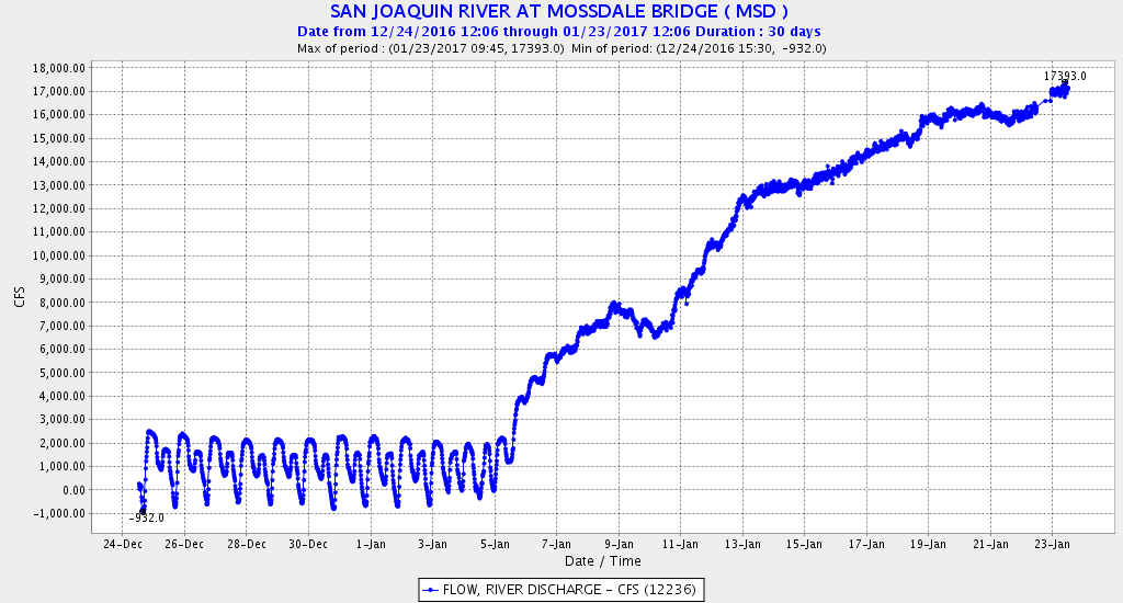 Figure 2. San Joaquin River flow at Mossdale at the head of the Delta upstream of Stockton and the Head of Old River. Note that on Jan 6 when flow reached about 6,000 cfs, the tidal signal dissipated when flow overcame the tidal forces.