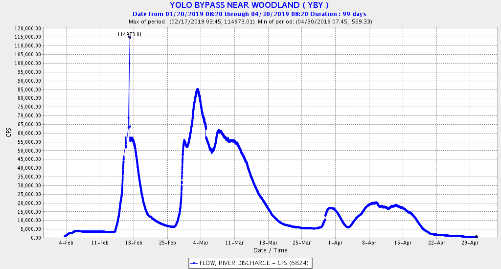 Figure 5. Flow in upper Yolo Bypass in winter-spring 2019.