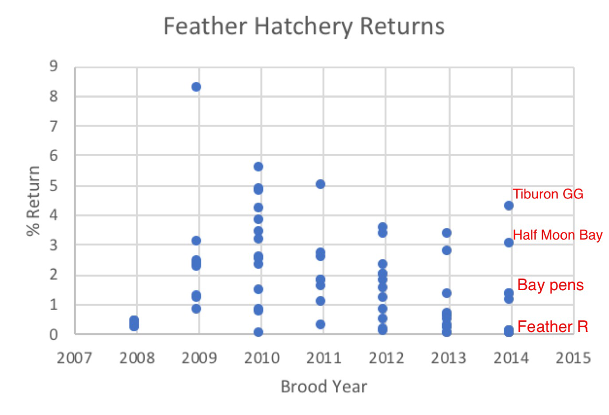 Figure 3. Feather River hatchery smolt release survival to adults from 2008-2014 brood years based on coded-wire-tag returns. Data Source: https://www.rmis.org/.