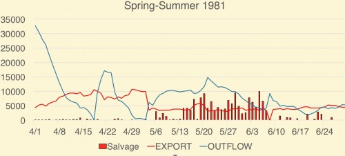 Figure 3. Spring salvage of juvenile Delta smelt at South Delta export pumps in 1981. Delta smelt juveniles begin reaching salvageable size (>20 mm) in early May. Also shown is export rate (cfs) and Delta outflow (cfs). The maximum allowed exportsrate is 11,400 cfs. (Data Source: CDFW)